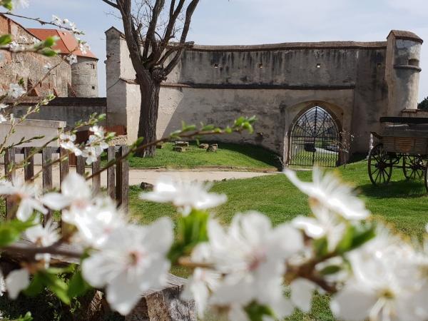 Hrad a zámek Dolní Kounice