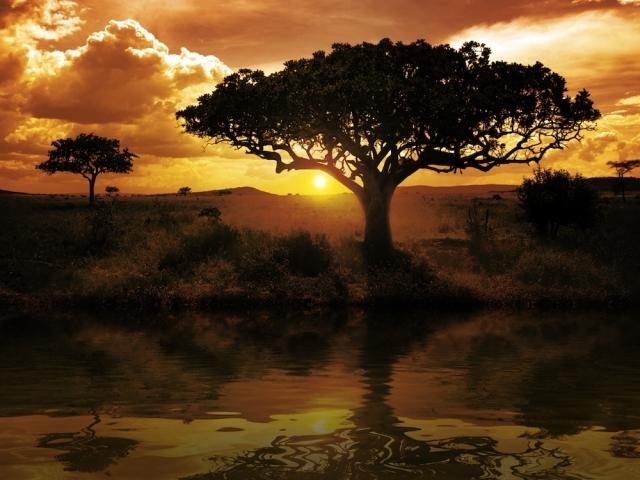 Keňa - safari, pláže a Kilimandžáro