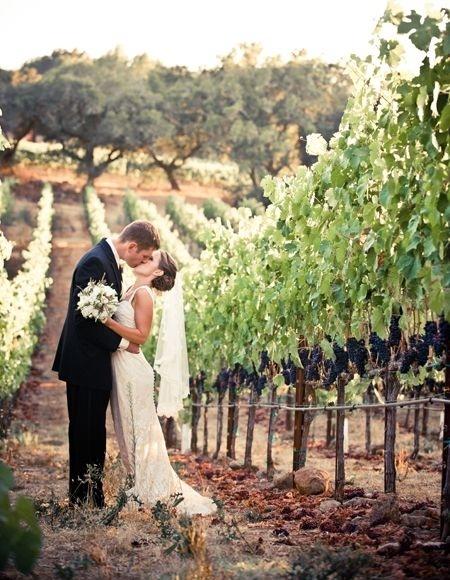 Svatba ve vinici