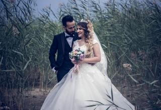 Tipy na prima knihy se svatební zápletkou!