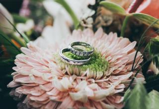 Na čem přinést snubní prstýnky k oltáři: Nápady na originální podložky