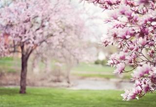 Staré pověry hoďte za hlavu a nebojíte se svatby v květnu